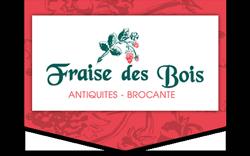 Antiquités Fraise des Bois, Plougastel